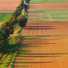 HELM-Software   Farmface App